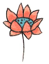 Abstrusa_Flower Schnabel auf