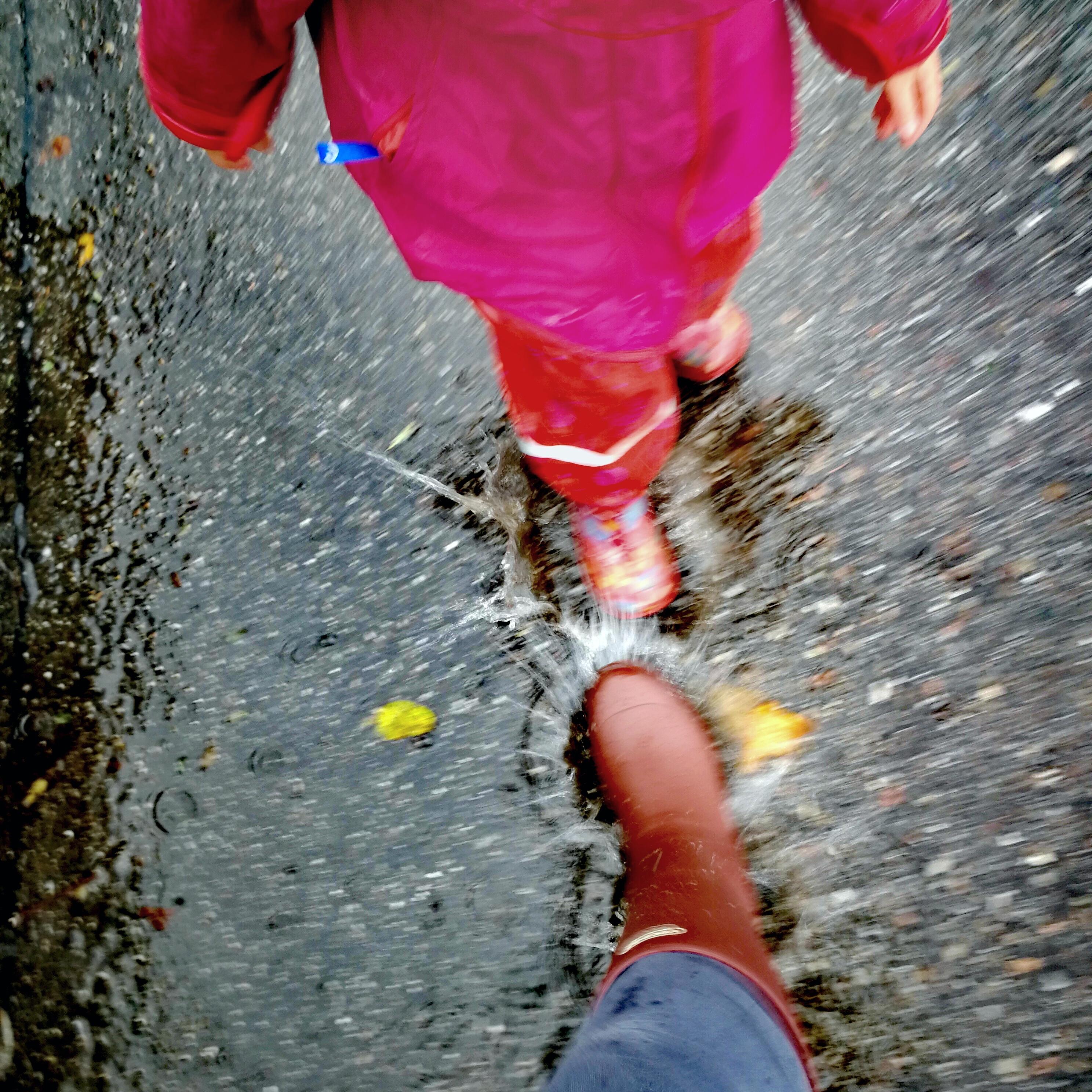 Regen Schnabel auf