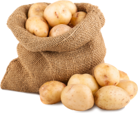 Kartoffeln Schnabel-auf