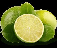 Limone Schnabel auf