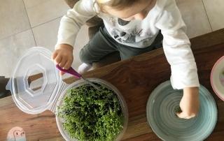 DIY Kresse schnabel-auf