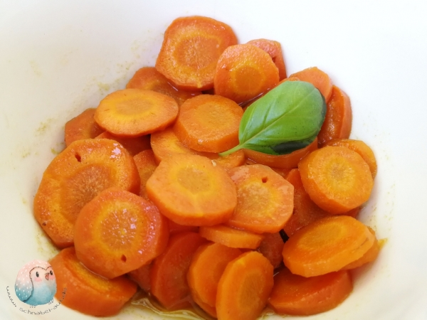 Honig Karotten schnabel-auf.de