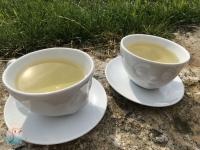 Gruener Tee schnabel-auf