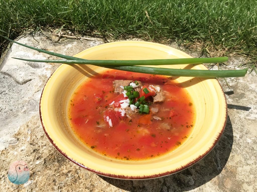 Tomaten Reis Suppe schnabel-auf.de