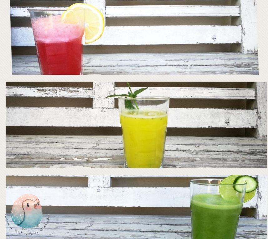 Limonade selber machen breit schnabel-auf.de