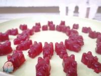 Gummibärchen selber machen schnabel-auf.de
