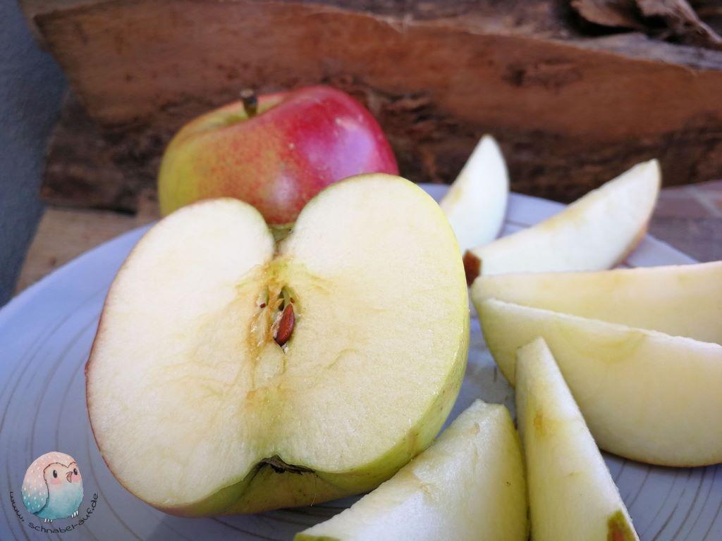 Apfel schnabel-auf.de