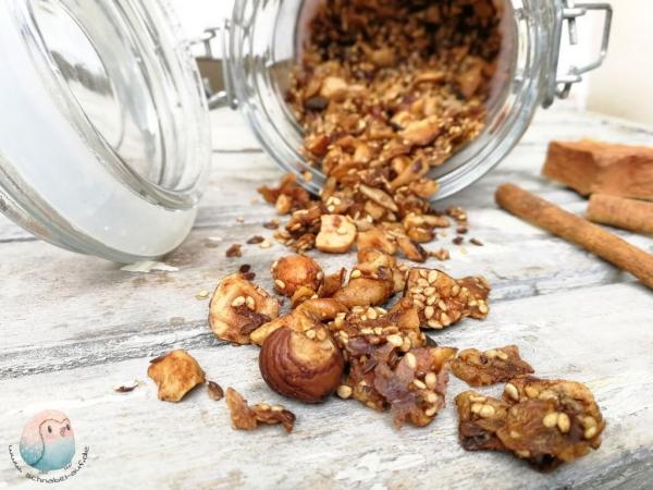 Granola ohne Zucker schnabel-auf.de