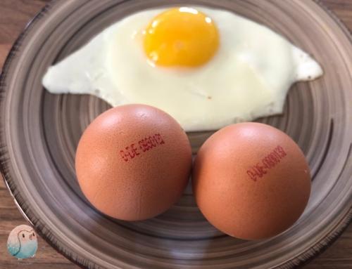 Bio-Ei für Kinder