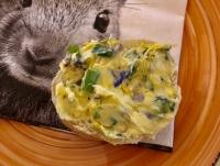 Löwenzahn_Butter