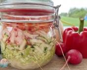 fermentiertes Gemüse fermentation schnabel-auf (3)