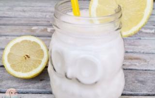 Zitronen Ayran schnabel-auf.de