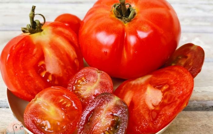 Tomaten - gesunde Rezepte für Kinder Schnabel-auf.de