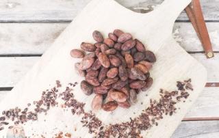 Kakao für Kinder schnabel-auf.de