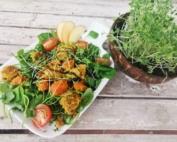 Wintersalat mit Sprossen growgrownut von schnabel-auf.de