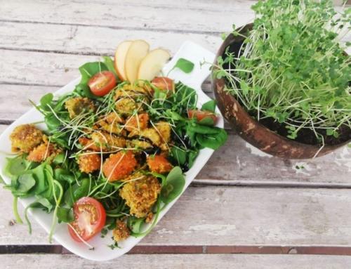 Wintersalat mit Microgreens