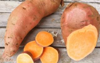 Süßkartoffel für Kinder schnabel.auf.de