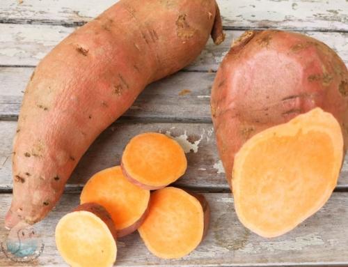 Süßkartoffel für Kinder
